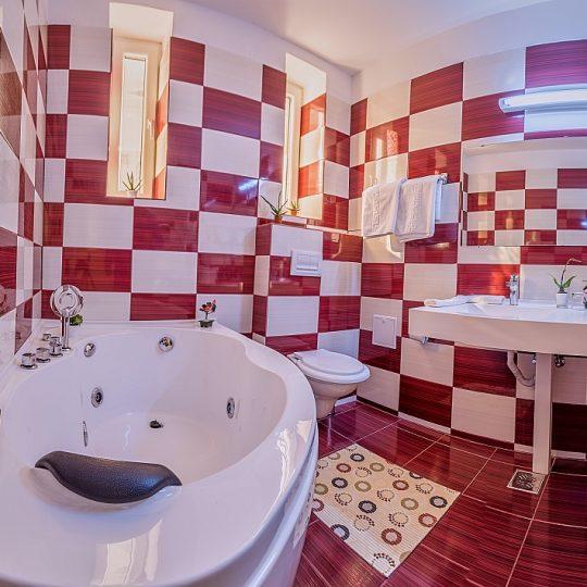 http://travelads.ro/rinasinaia/wp-content/uploads/2017/02/Apartament_Cerbul_Baie-1-540x540.jpg